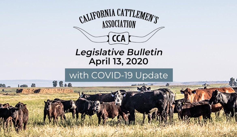 4/13 Legislative Bulletin with COVID-19 Update