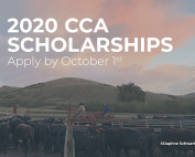 2020 CCA Scholarship, Apply by Oct 1