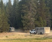 Livestock trailers in forest