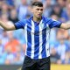 Forestieri Sheffield Wed