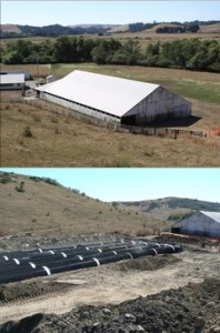 Rainwater Catchment System at Gilardi Ranch