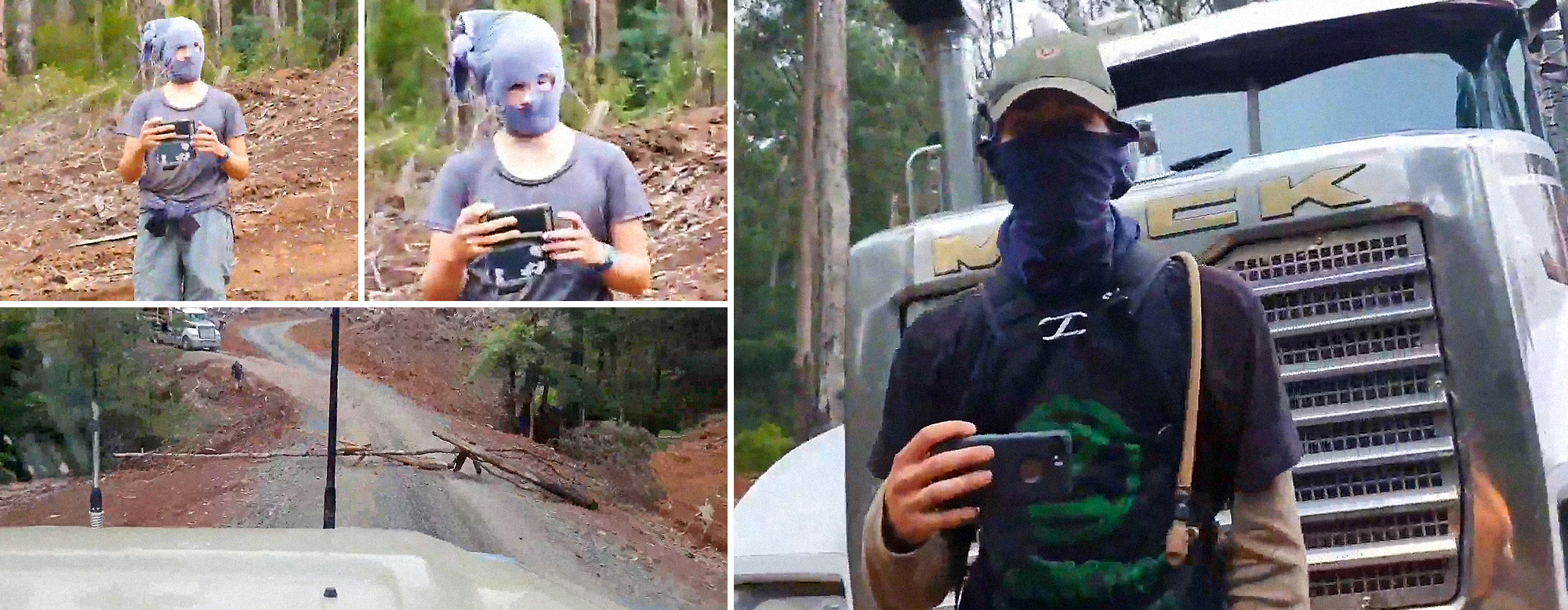 VIDEO: Climate activists prevent state-approved timber harvest weeks after devastating bushfires · Caldron Pool