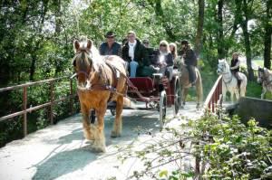 Promenades en calèche sur le pont de la Clapière, balades à cheval, camargue