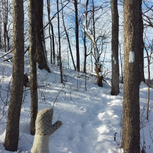 A Beautiful Day for a Winter Hike!