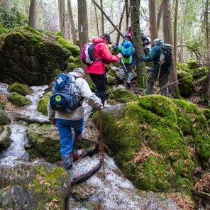 Spring Hikers