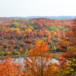 Fall Colours on the Trail