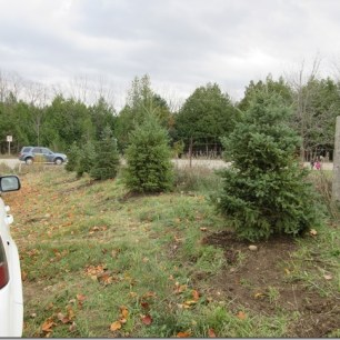 Hockley Valley Parking Lot Gets Spruced Up