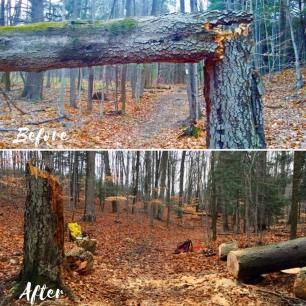 Before & After Trail Maintenance