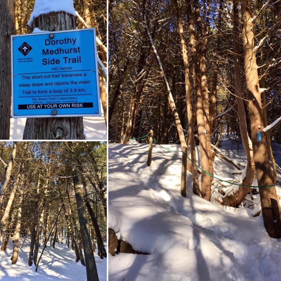 Dorothy Medhurst Side Trail