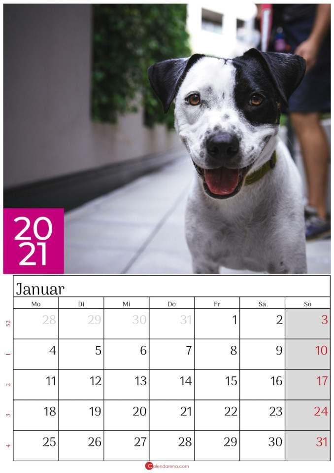 kalender januar 2021 dog