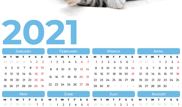2021 Calendar with cats
