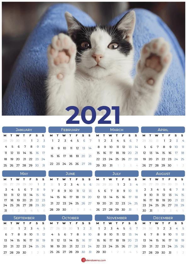 cats 2021_blue