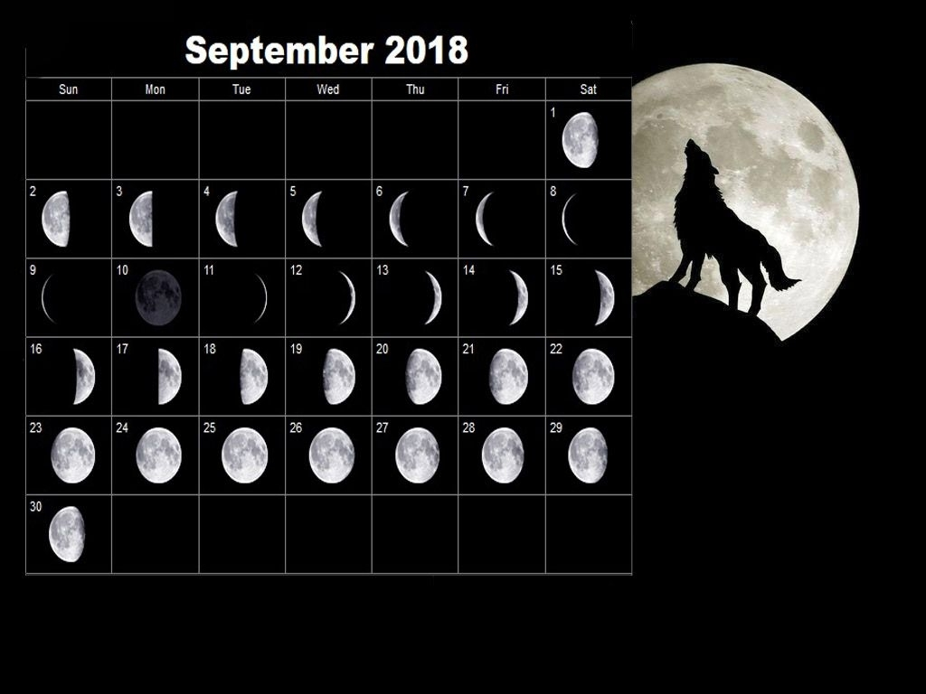 12 Month Calendar Based On Lunar Cycles
