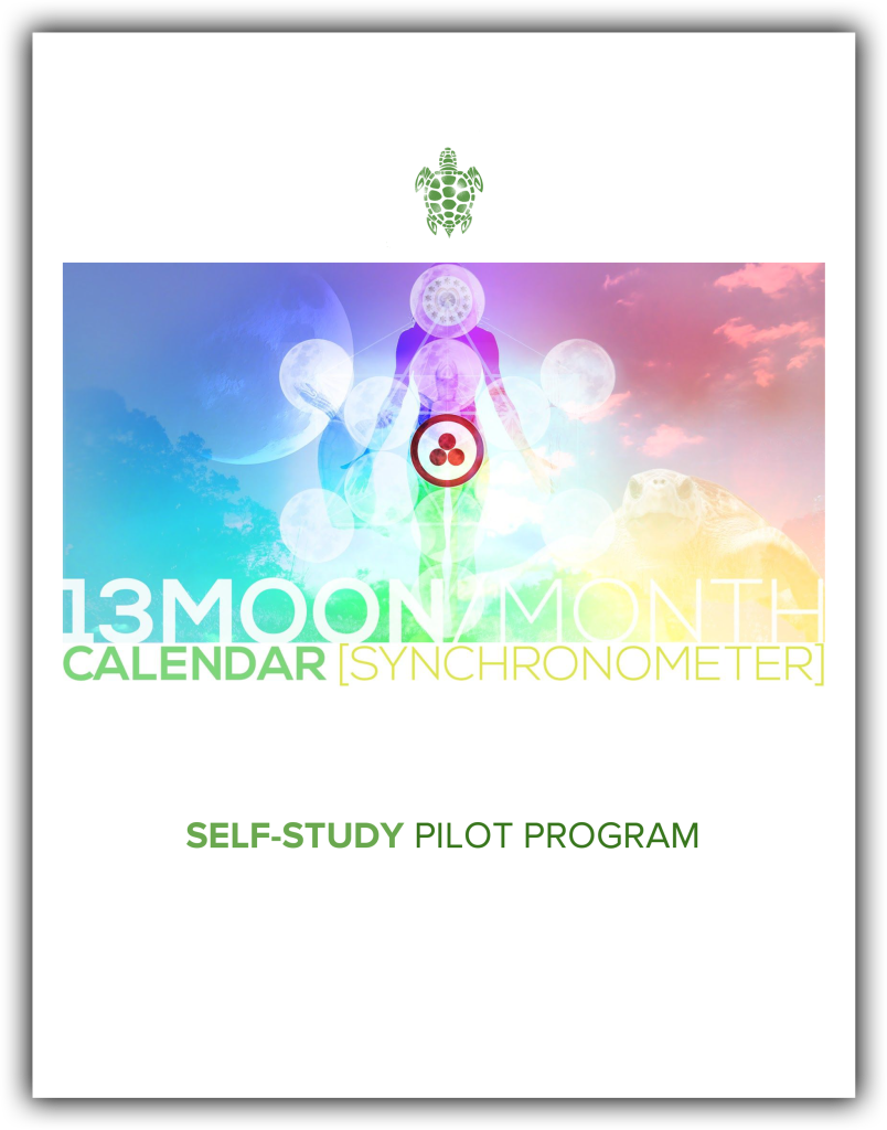 13moon_selfstudy_pilot-program
