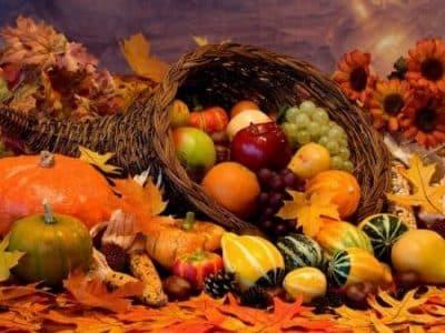 calendrier lunaire jardin du 7 octobre