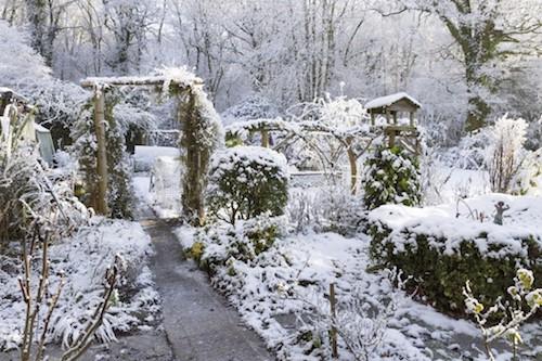calendrier lunaire jardin decembre 2017