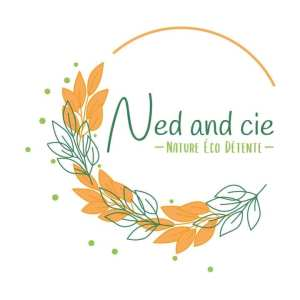 ned and cie logo