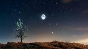 calendrier lunaire - calendrier des lunes 2021 - 11 Novembre