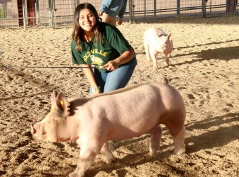 Fair's Animal Round Robin Requires Diverse Skills