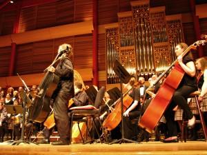 = orchestra
