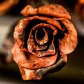 metalsculptor thumb