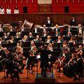 thumb orchestra_copy_copy