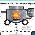 thumb Biochar-Infographic