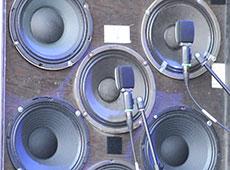 Speakers at X-fest