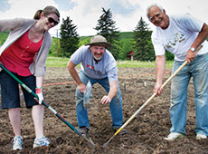 Grow Calgary farm manager Paul Hughes, centre, and two volnteers work the land in the city's first urban farm
