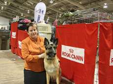 Alberta Kennel Club Calgary