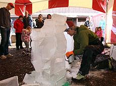 icescultptureTHUMB