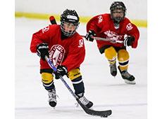 TN hockeyrinktimes