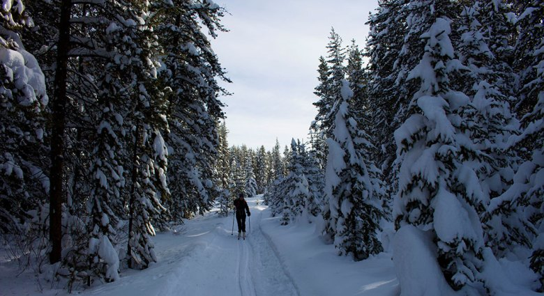 Baker Creek skiing