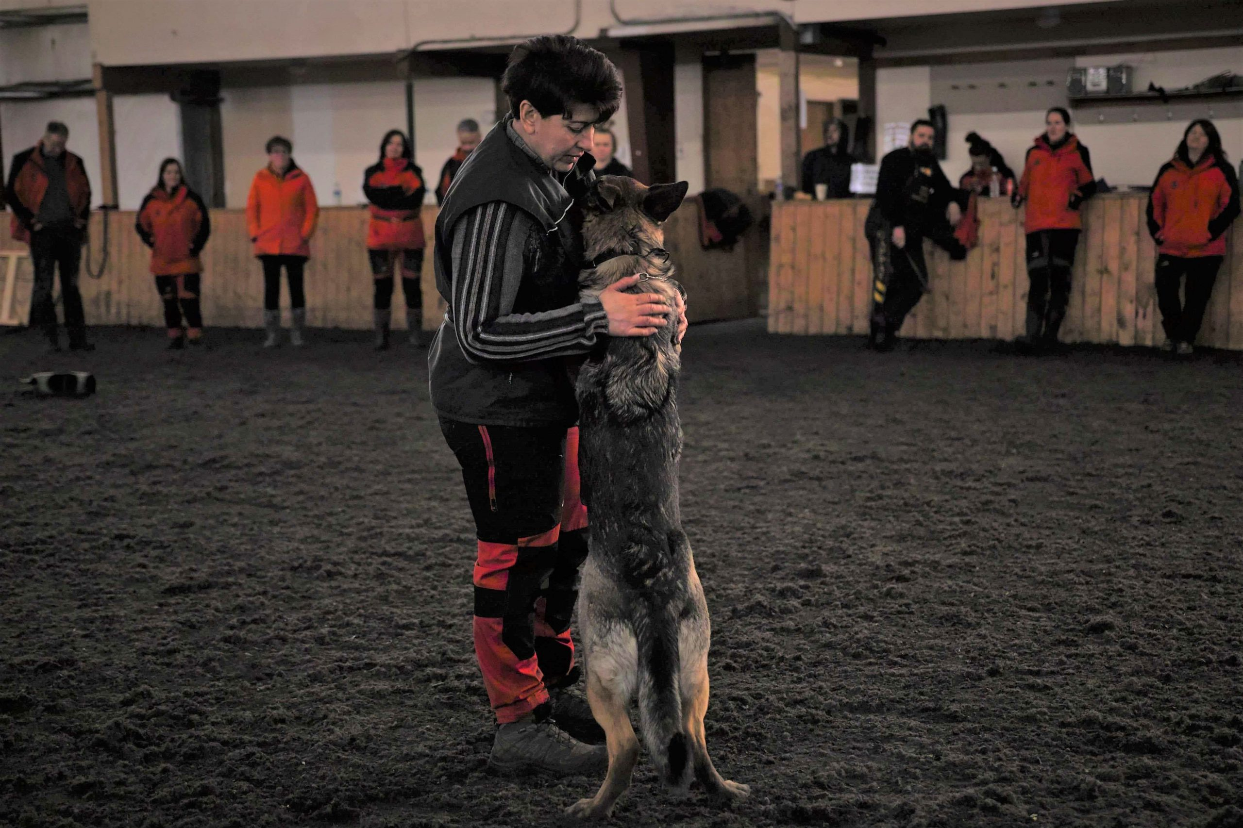 Schutzhund 2 1 copy