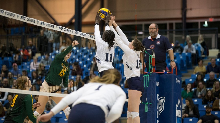 The MRU volleyball team lost their first game of the season on Nov. 22 against U of A. Although it was their first loss of the season, they bounced back for a big 3-0 win the next day. Photo credit: Cougar Athletics