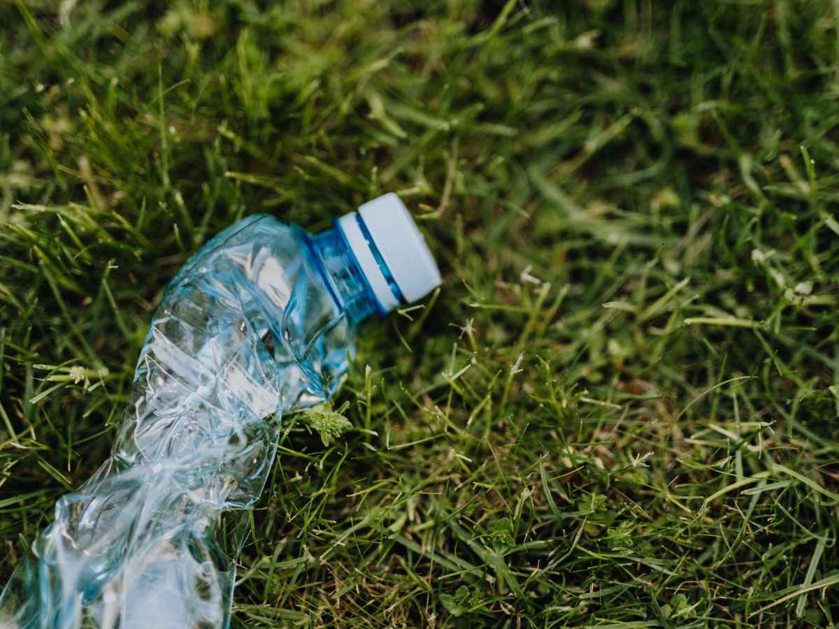crushed plastic bottle on green park grass