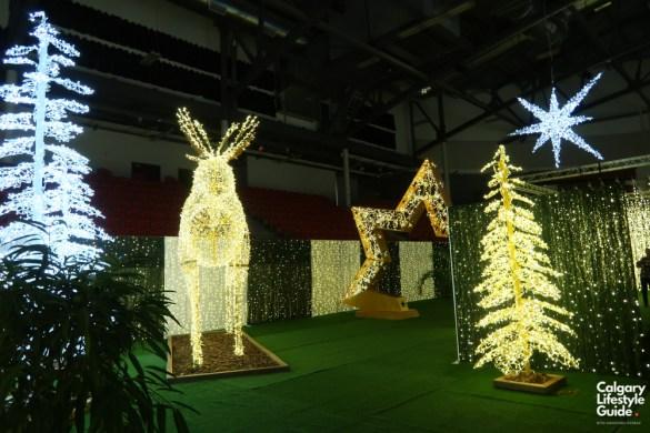 Noel Indoor Light Show