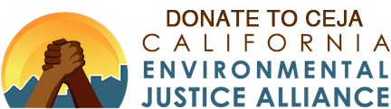 Donate-to-CEJA-Transparent