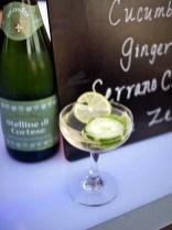 BubblyFest - nation's only dedicated Sparkling Wine & Champagne Festival - photogarphy by Liz Dodder