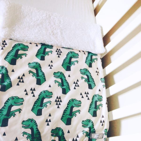 d1ab8fa652 Dinosaur blanket by Calico Clouds