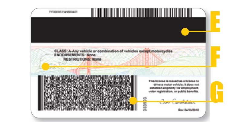 California Driver License - back