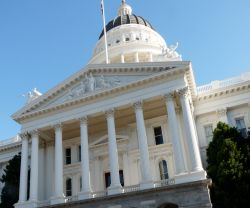Many Legislative Bills Introduced