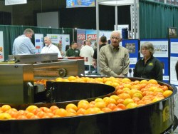 New Study Reveals Economic Impact of California Citrus