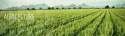 Farm Bureau Kicks Off 'Our Food Link' Program
