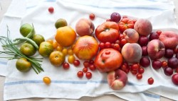 Webinar to Examine Environmental Impact of Produce Safety Proposed Rule
