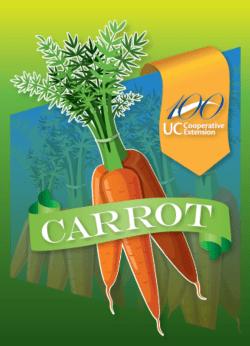 UCCE Centennial Carrots