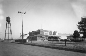 Producers Cotton Oil Company Plant Near Calwa, California