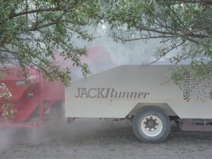 Nut_Harvest_Safety bank-out wagon