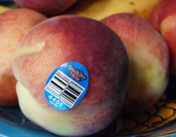 peaches from Family Tree Farms