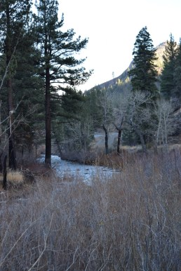 Looking upstream (southeast) at Wolf Creek from the road.